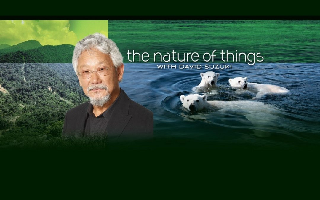 "DACAPO Records ADR for Zoot Pictures ""The Nature of things with David Suzuki"""